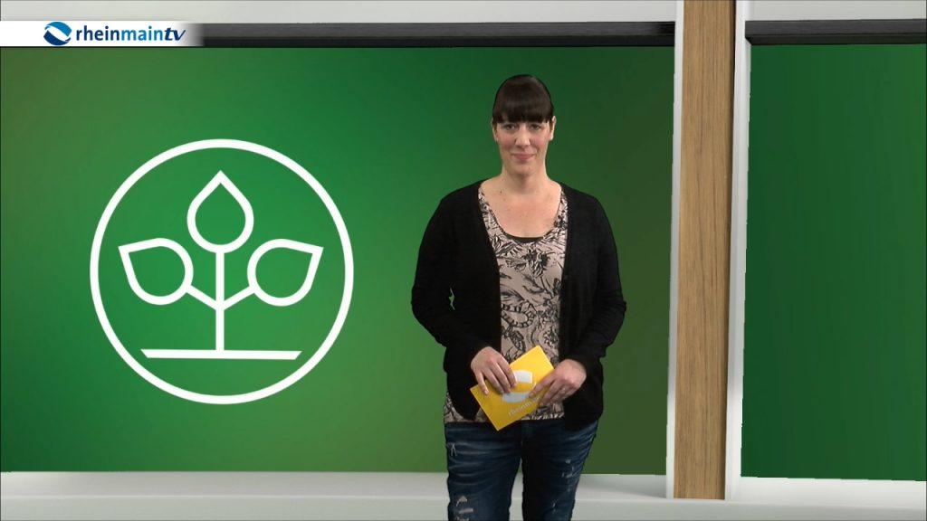 Referenzen der Bad Nauheimer Redakteurin Katharina Wagner.